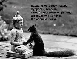 http://your-happy-life.com/wp-content/uploads/2013/09/zagruzhennoe1.jpg