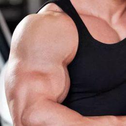 Что полезно «есть» мышцам?