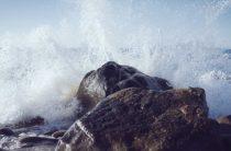 Шлаки и токсины : как очистить организм