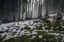 Как хорошо зимой…