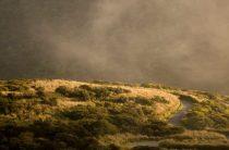 Азорские острова: чудо в Атлантическом океане